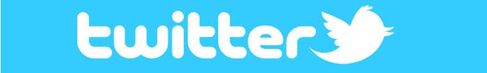 twitter header logo
